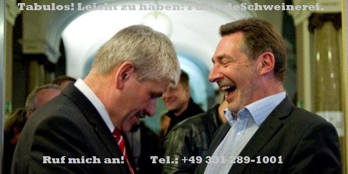 Oberbuergermeisterwahlen in Potsdam